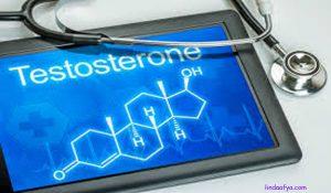 testosterone na uwezo wa tendo la ndoa